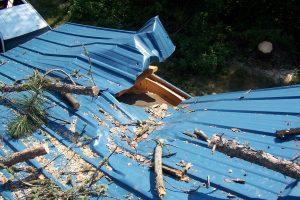 sundew storm damage 009